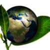 corporate travel sustainability